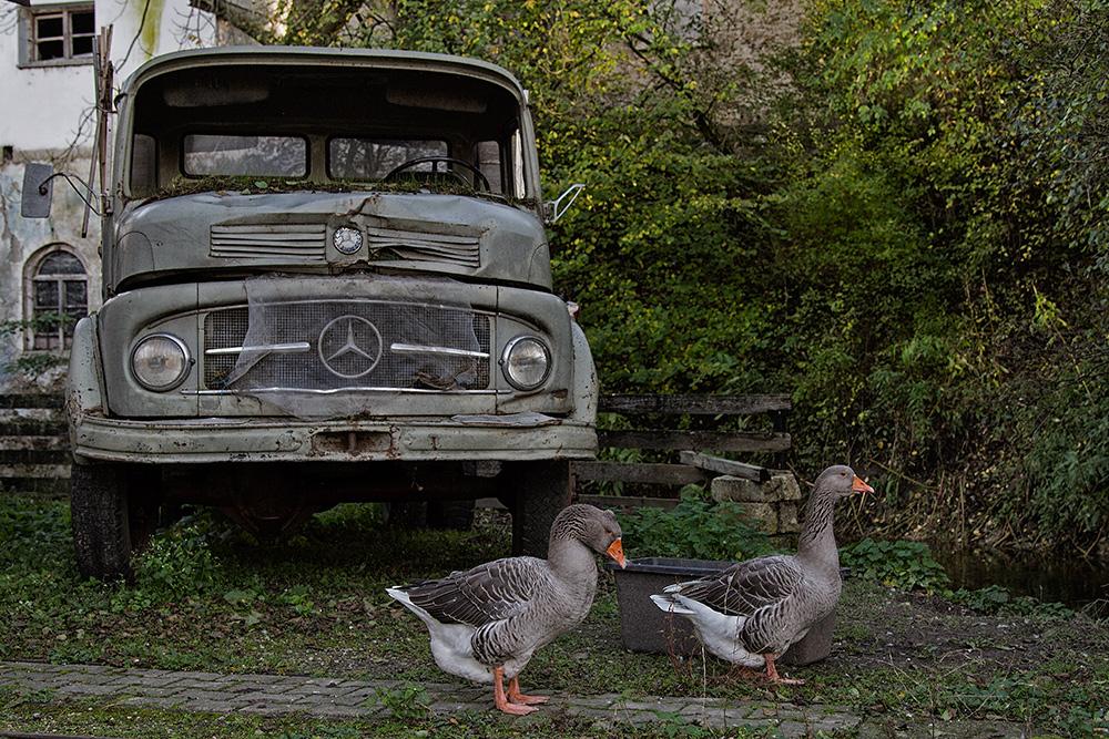 Mercedes mit Bodyguard