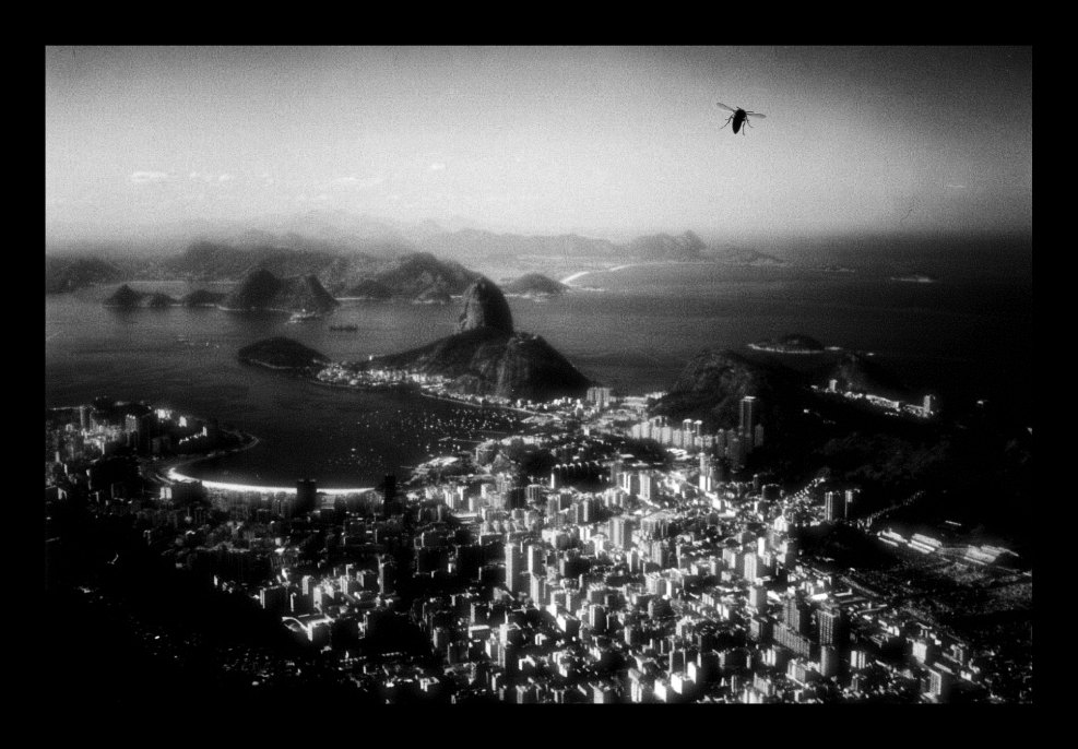 Merkwürdige Erinnerungen an Rio de Janeiro