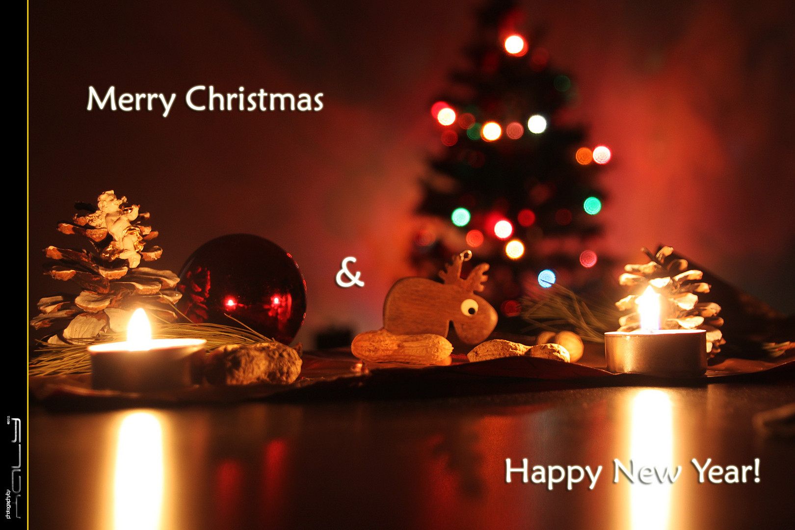 Merry Christmas + Happy New Year