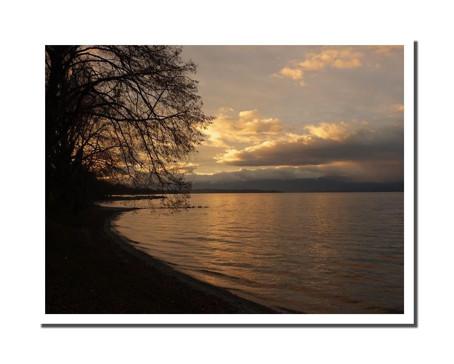 Merveilleux Lac Léman