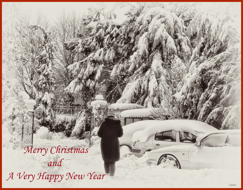 Mery Christmas and A Happy New Year ..