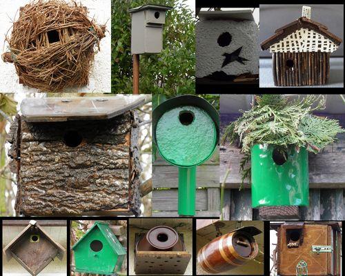 Mes cabanes à oiseaux,2009 a 2011..