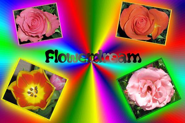 Mes fleurs sourire