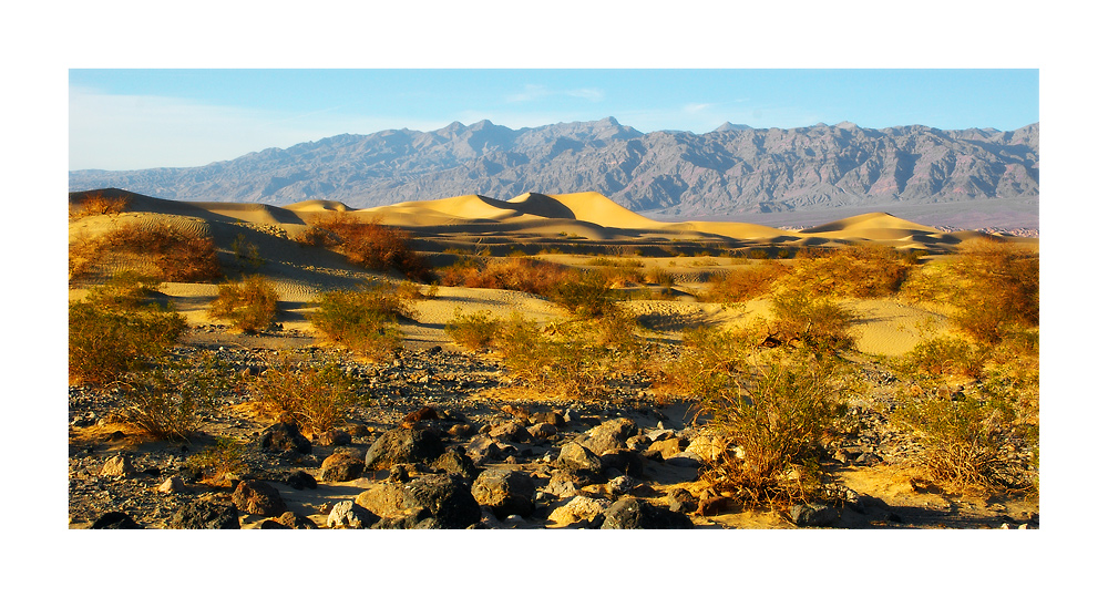 Mesquide Sand Dunes II