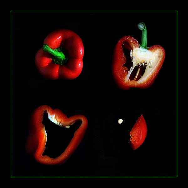 Metamorphose einer Paprika