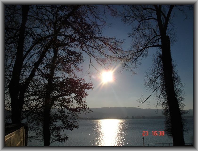 Mettnau am Bodensee im Januar II
