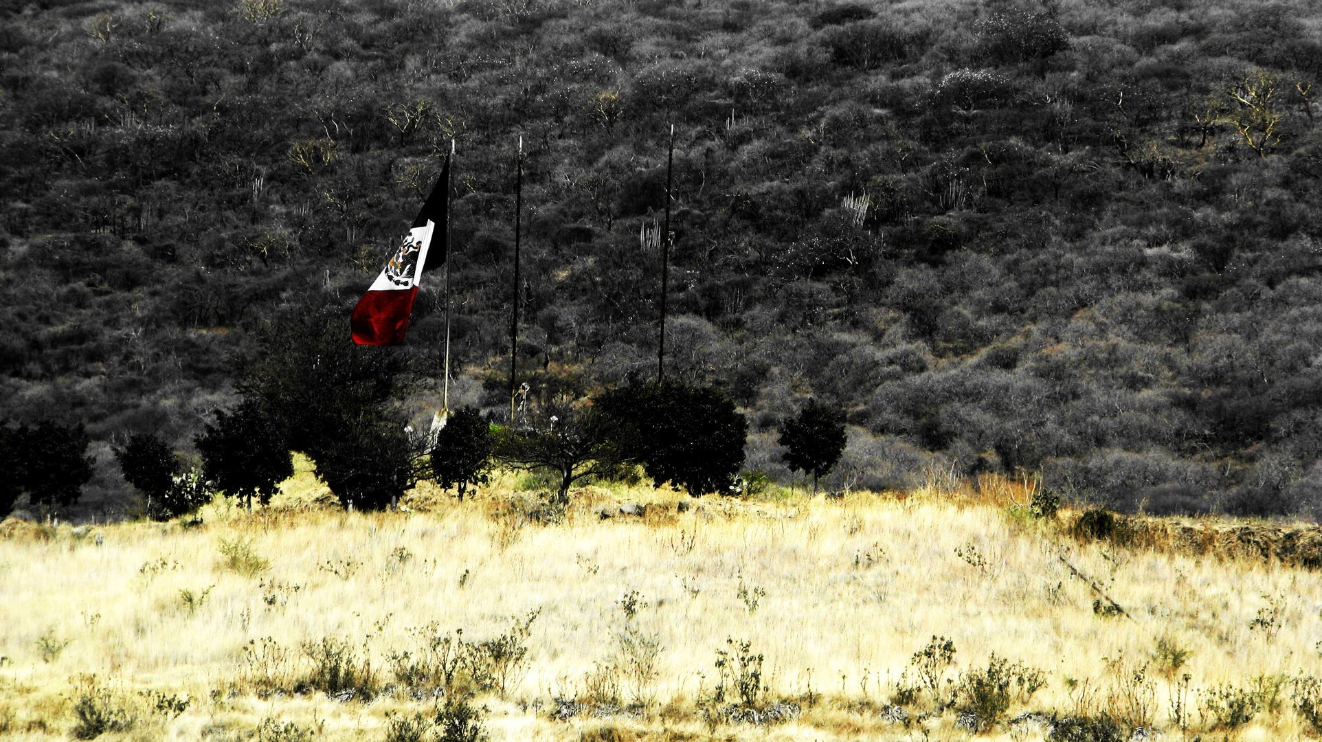 Mexico Cabizbajo