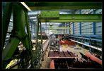 Meyer-Werft, Papenburg III