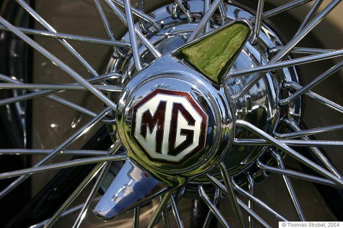 MG Detail