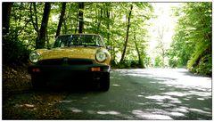 MGB im Wald
