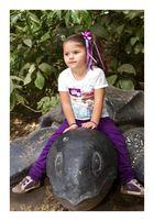 mi nieta jinete de tortugas