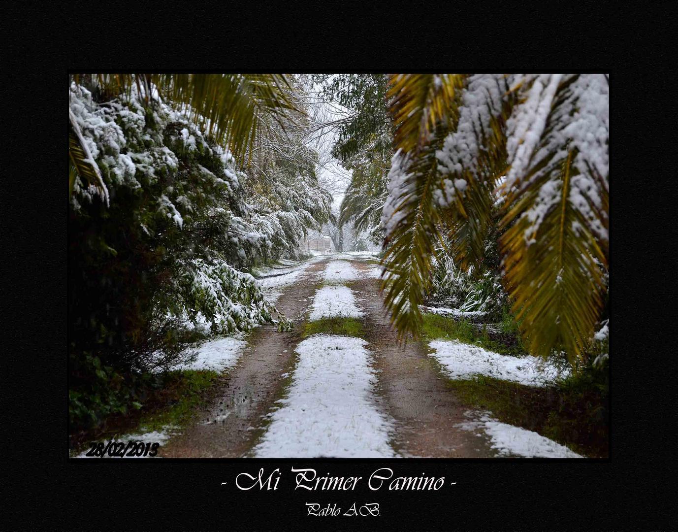 - Mi Primer Camino -
