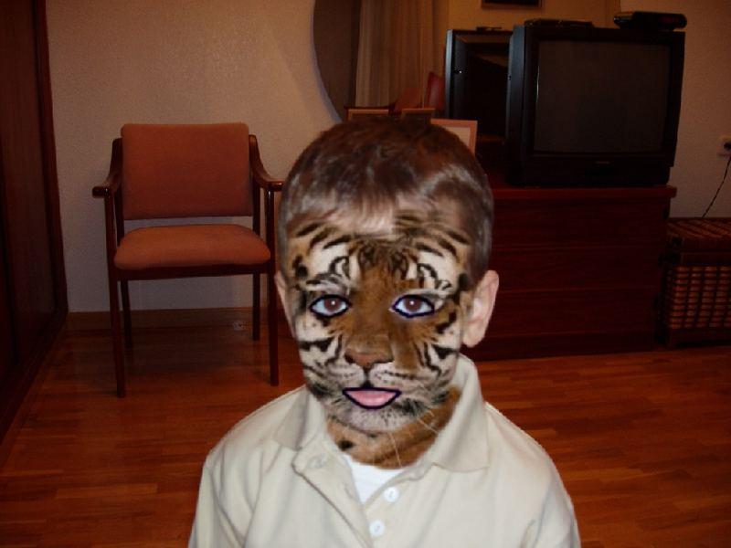 mi tigre