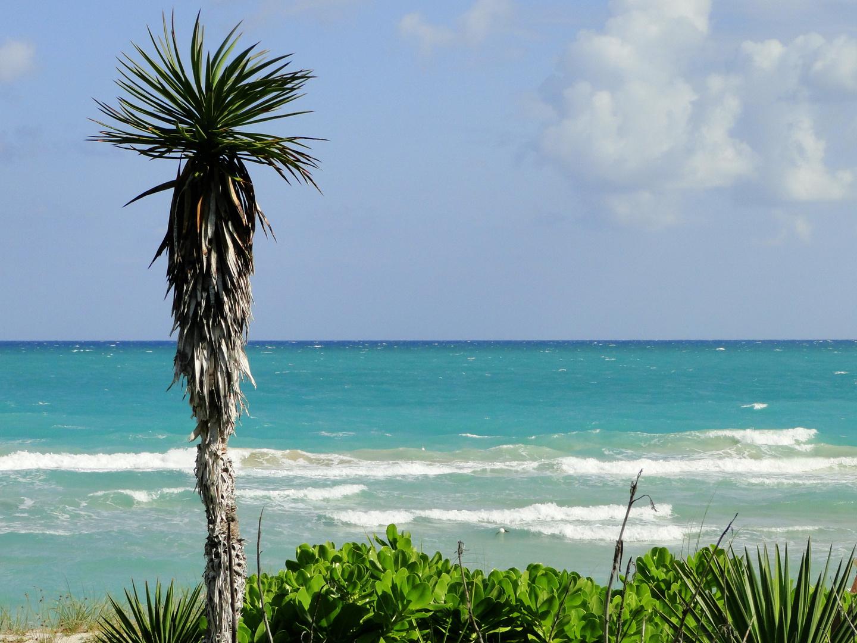 Miami Beach in November..