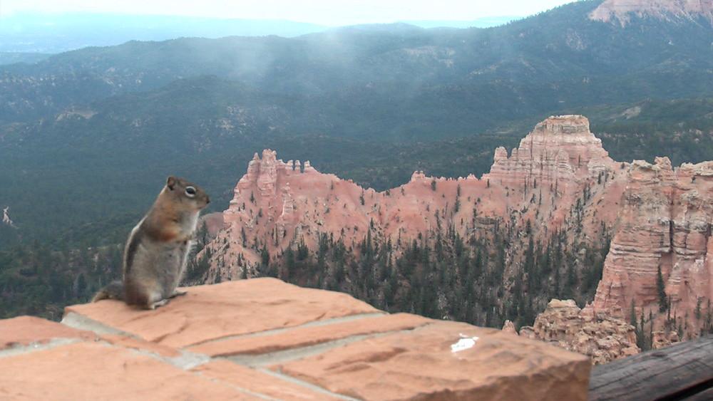 Mice Canyon