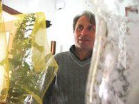 Michele Giaimo