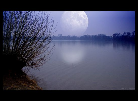 Midnightmoon