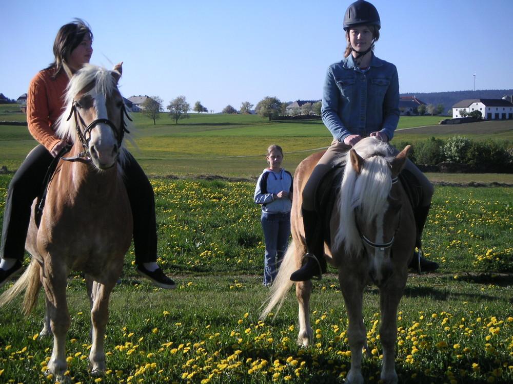 Mikado und ich beim Ausreiten ( Rechtes Pferd am Bild)