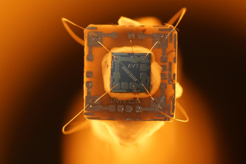 Mikroelektronik für die Hitze gemacht