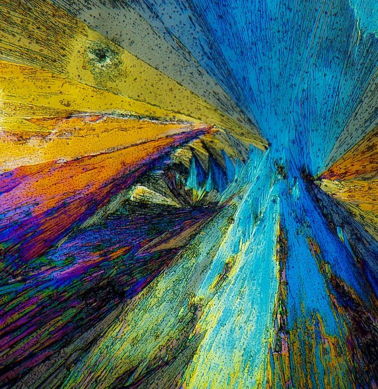 Mikrokristalle Oxalsäure