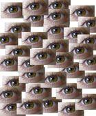 Mil ojos