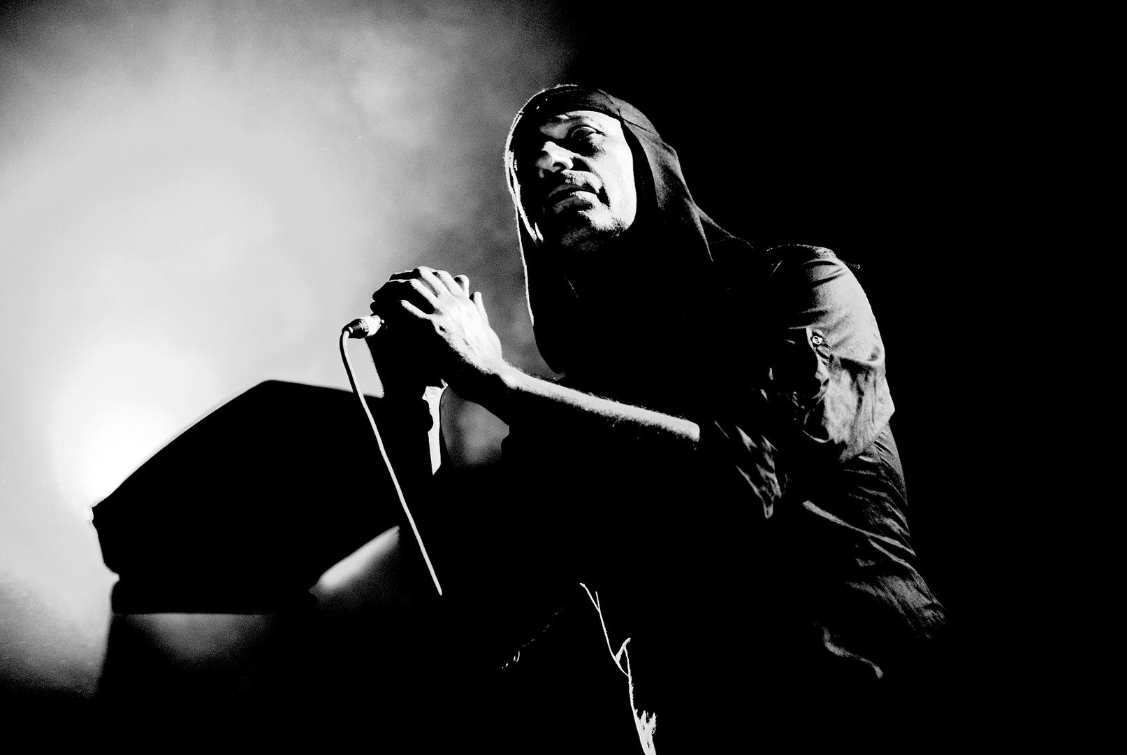 Milan Fras, Laibach