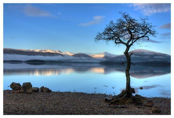 Milarrochy bay (Loch Lomond)