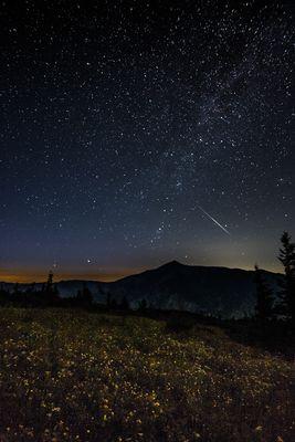 Milchstrasse light mit Sternschnuppe