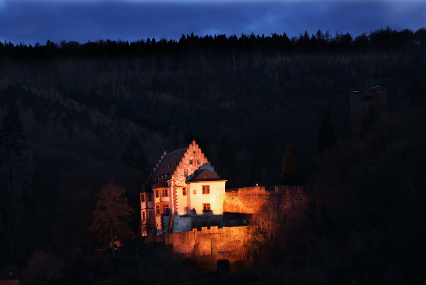 Mildenburg (Untermain)