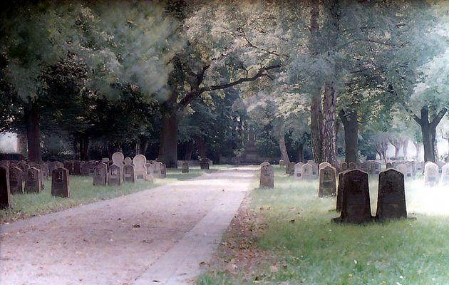 Militärfriedhof Münster Nord