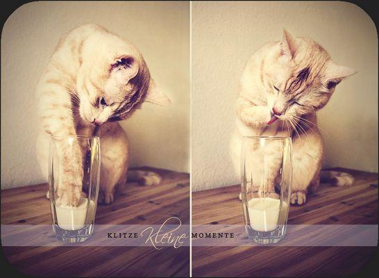 * Milk *