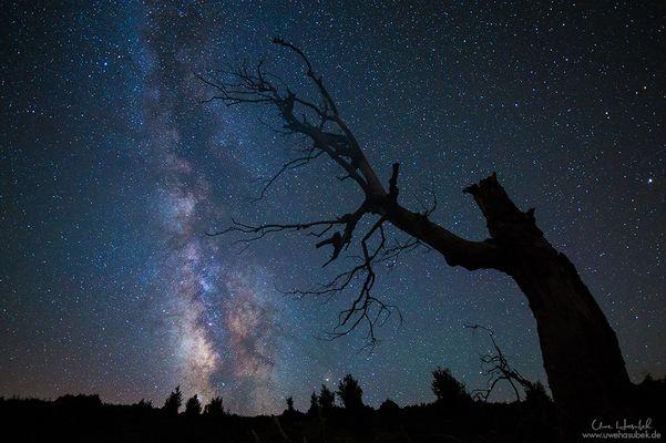 *** Milky Way... ***