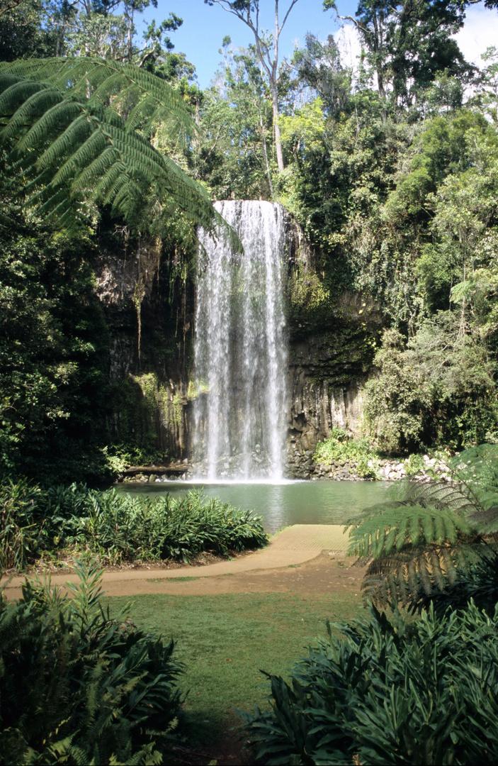Millaa-Millaa Falls