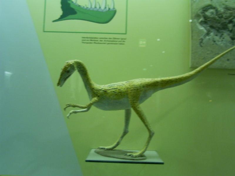 Mini Dinosaurier