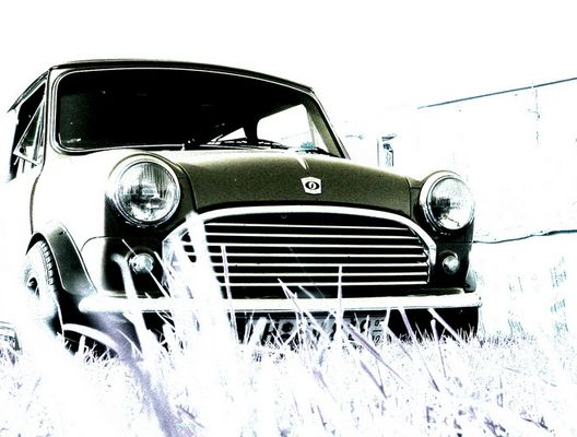 Mini Leyland im Gras