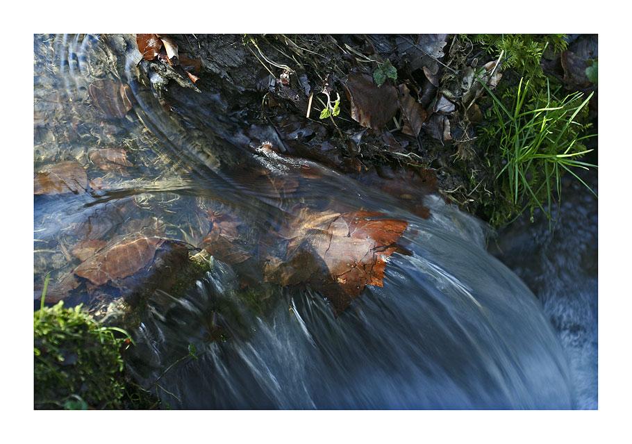 mini-Wasserfall im Wald