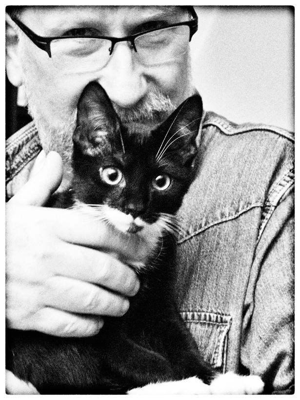 Minititus zum Weltkatzentag