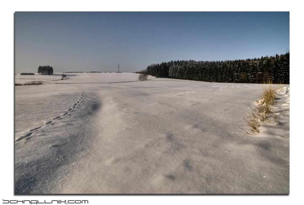 minus 14° b