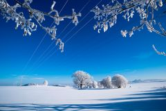 ..minus 15 Grad - Wunder der Natur