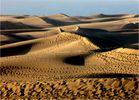 Mir ist heute nach Sonne, Sand und Meer ...