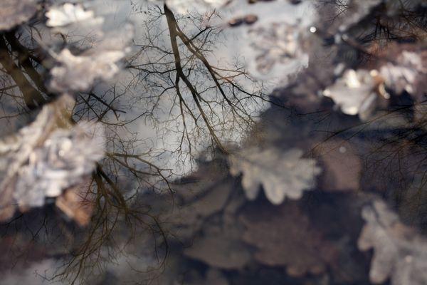 Miroir éphémère