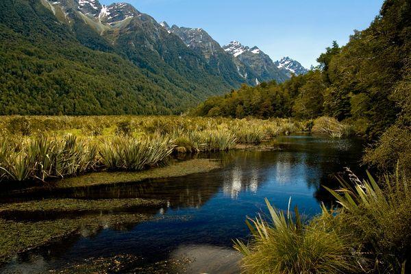 Mirror Lake - Fiordland N.P. - Neuseeland - Südinsel