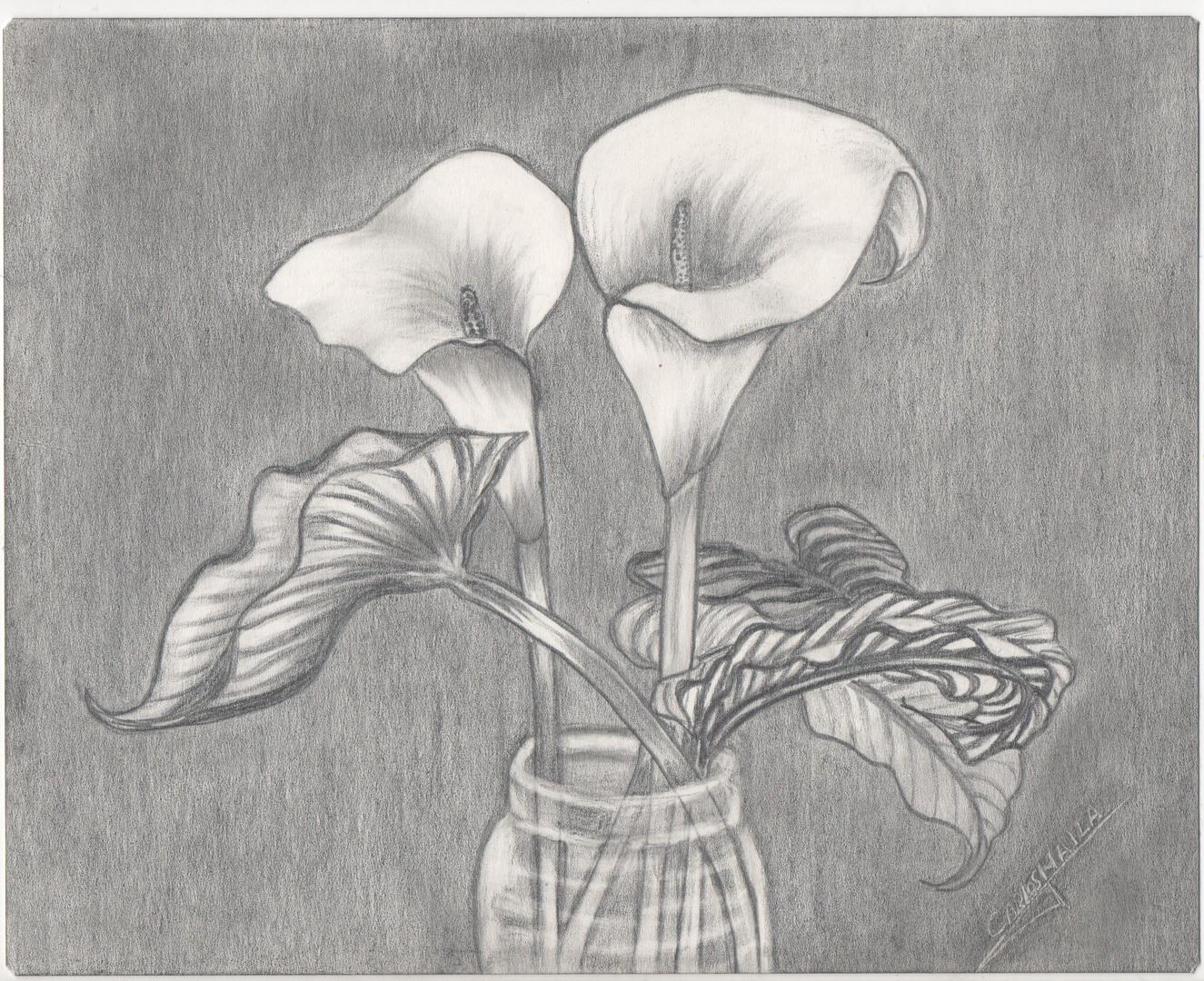 mis dos flores
