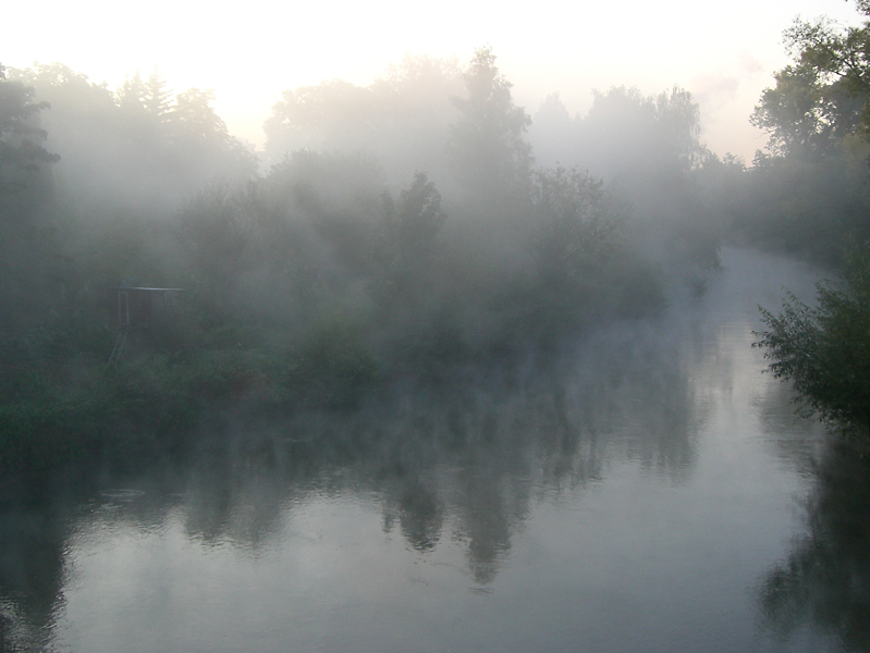 Mist in the morning - 1