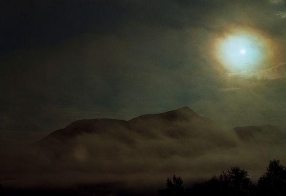 Mist & Sun