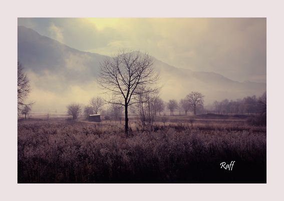 mists of