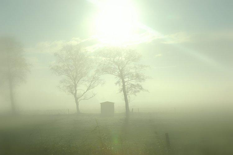 Misty morning #2