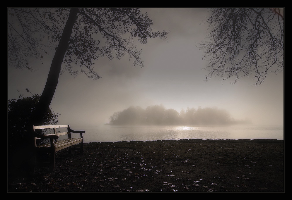 Misty Morning [4]