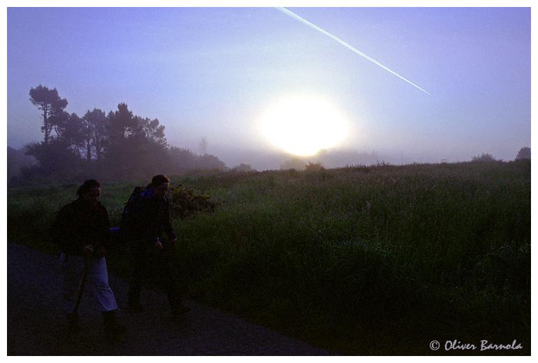 Misty Morning (Camino de Finisterre, 6)