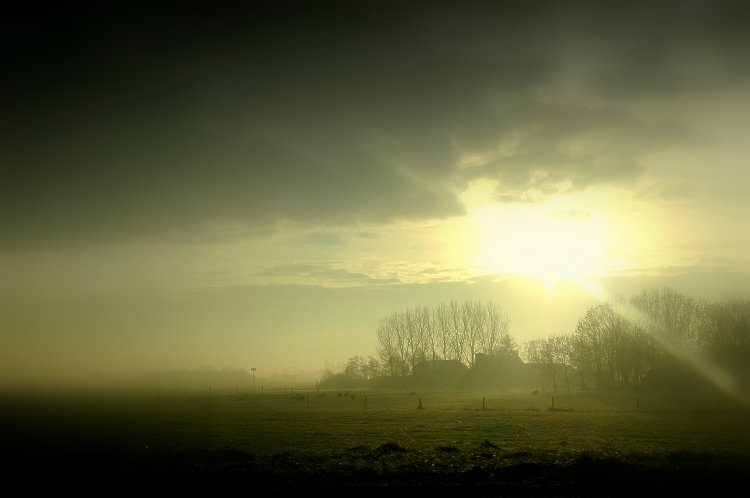 Misty morning in east Groningen